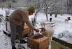 Winterbehandlung