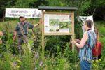 Bienenweide in Malchen