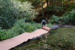 Schutz-Bepflanzung der Dammkrone am Dornbachteich