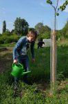 Teichpflege im Wühlmausgarten und erster Giesseinsatz auf der Bienenweide