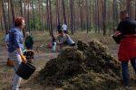 Waldeinsatz zur Rettung des Roten Waldvögeleins