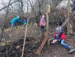 Wühlmäuse weihen kleine Baumschule ein