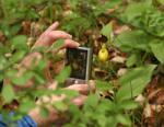 Gruppenexkursion nach Mainfranken zu den Orchideenwiesen