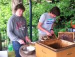 Honig schleudern mit den Wühlmäusen