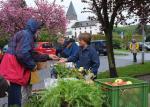 Pflanzenflohmarkt in Seeheim