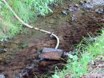 Wasserentnahme aus dem Landbach