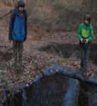 Weidenzaun am Hermelinweiher