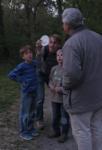 Fledertiere am Waldweiher