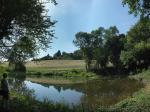 Besuch am Mittelbachteich