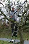 Obstbaumschnitt im Stettbacher Tal abgeschlossen