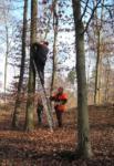 Neue Nistkästen am Steinbruch Nieder-Beerbach