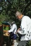 Honigschleudern mit den Wühlmäusen