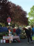 Wühlmausstand auf dem Pflanzenflohmarkt
