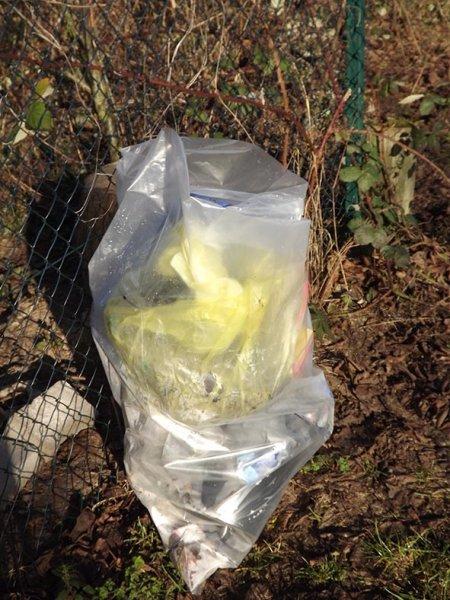 Müllaktion-Laukenloch-6