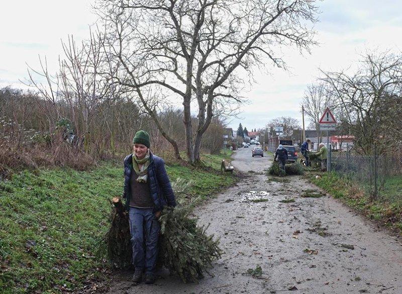 Aktion-Weihnachtsbaum-09-10x14s