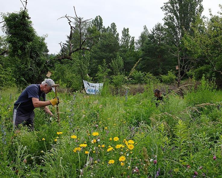 Einsatz auf der Bienenweide 09