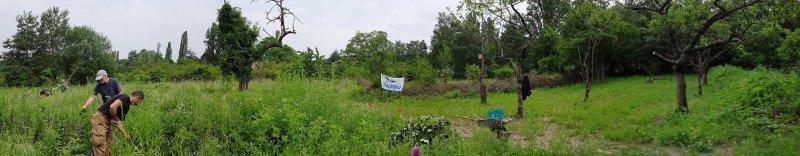 Panorama Bienenweide 7