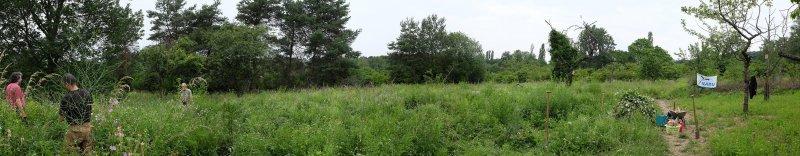 Panorama Bienenweide 8