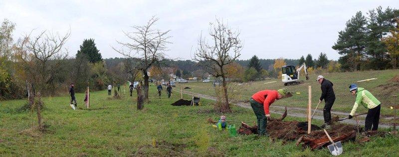 Kirschgarten 36
