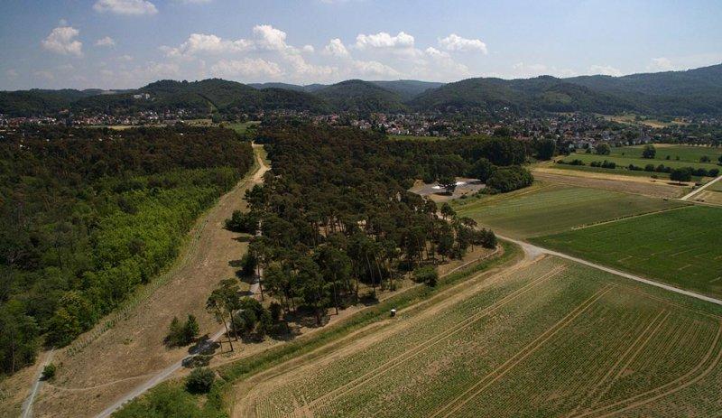 Luftbild Bickenbacher Düne 03
