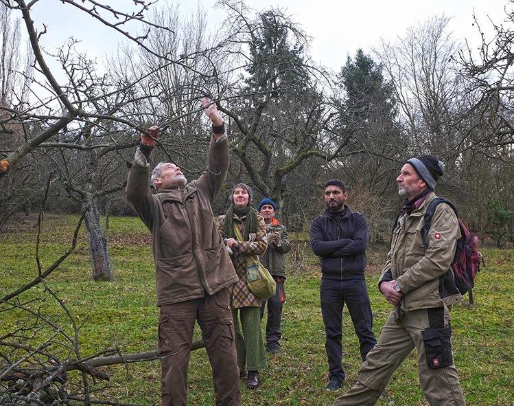 Baumschnitt Bipsweide - Einweisung 05