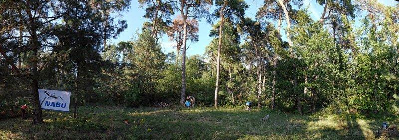 Einsatz-Wald-Odenwaldstrasse-13-10x28s