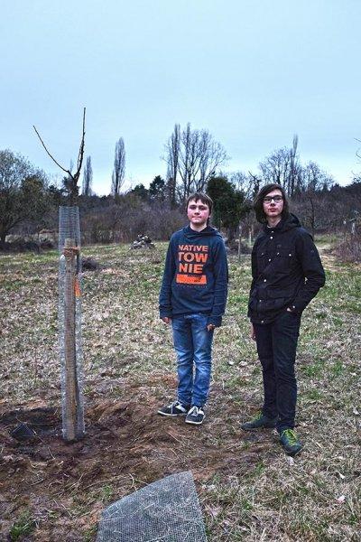 Baumschutz 5