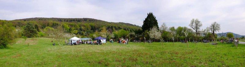 Kirschgartenfest 6