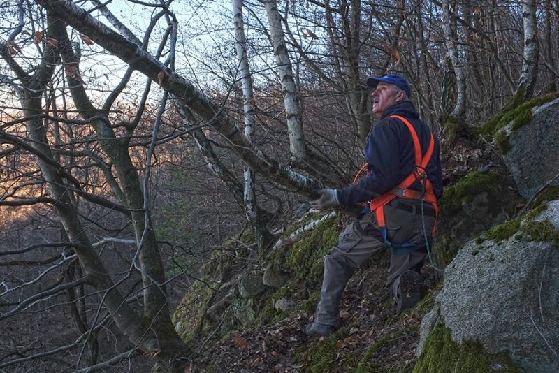 An der Abbruchkante 04 toter Baum 10x15s