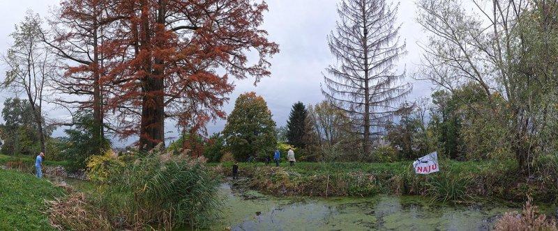 Schloßteich-Seeheim-06-10x24s