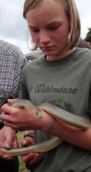 Schlangenbeschwörer 14