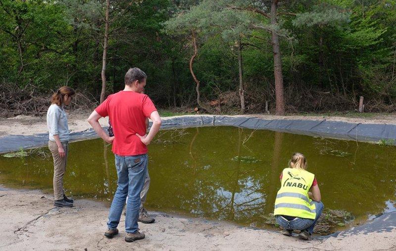 Amphibienteich-Malcher-Tanne-01-10x16s