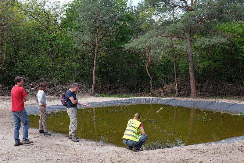 Amphibienteich-Malcher-Tanne-03-10x15s