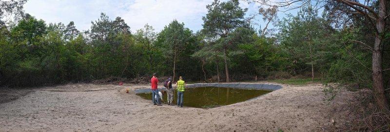 Amphibienteich-Malcher-Tanne-06-10x30s