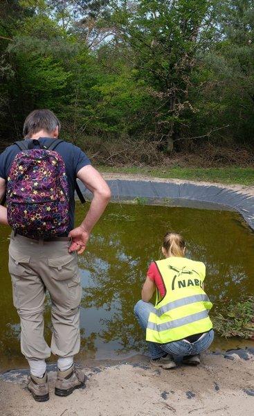 Amphibienteich-Malcher-Tanne-07-10x16s