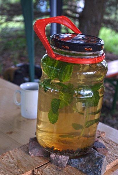 Tag-der-Artenvielfalt-04-Grüner-Tee-mit-Minze-10x15s