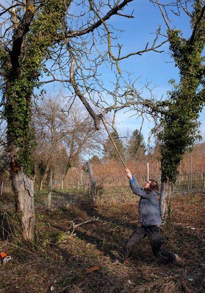 Einsatz Im Hakel 15 Toter Nussbaum 10x15s