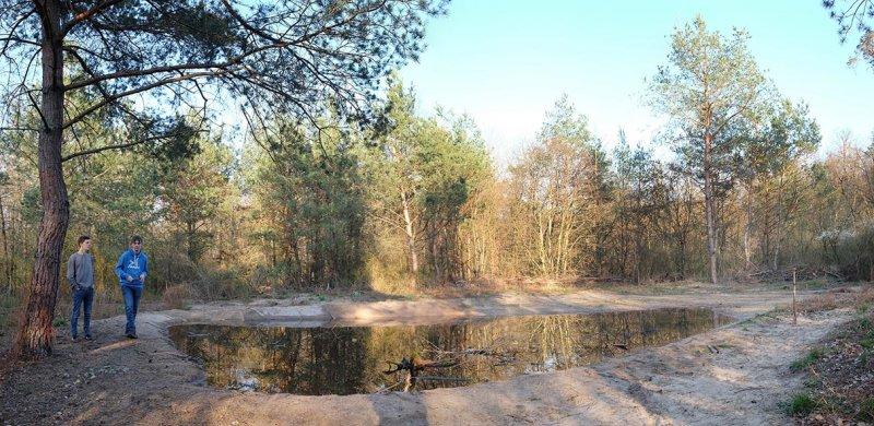 Amphibienteich-Malcher-Tanne-Uferabdeckung-mit-Filzmatten-08-10x20s