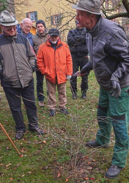 Obstschnitt-Praxis Altes Forstamt Jugenheim 12 10x14s