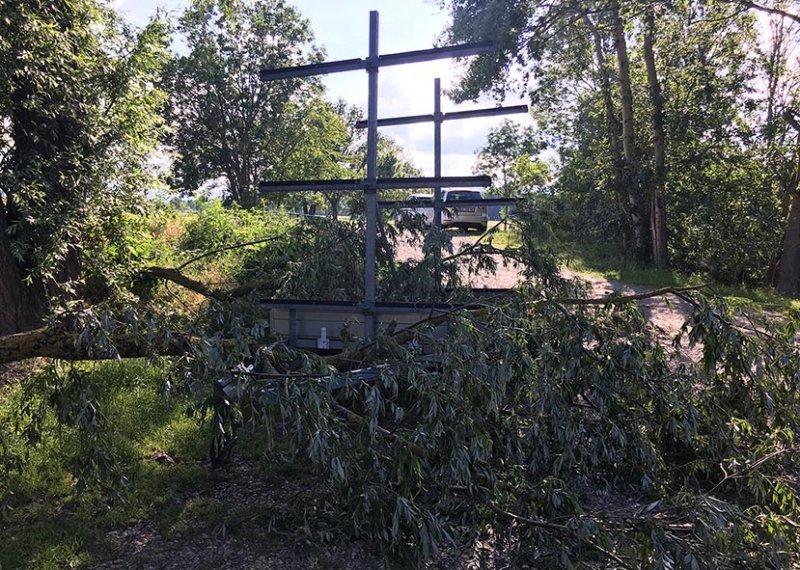 7 Baum auf dem Bootshänger 3 10x13s