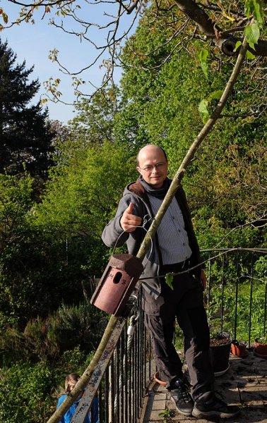 Kasten für den Gartenrotschwanz - Tino 1