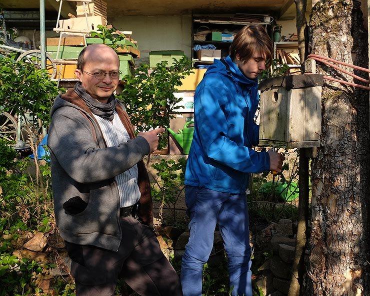 Kasten für den Gartenrotschwanz - Tino 2