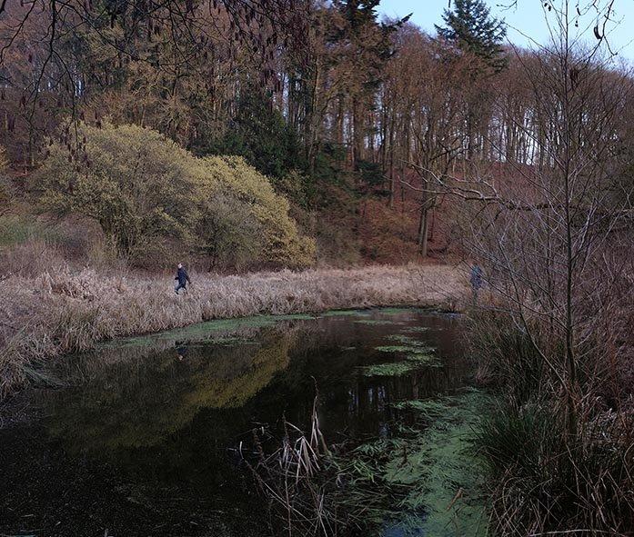 NAJU-Einsatz Froschtümpel am Berbach 03 Jan 10x12s