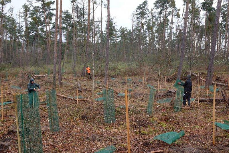 Einsatz-Schonung-Waldfriedhof-02a-10x15s