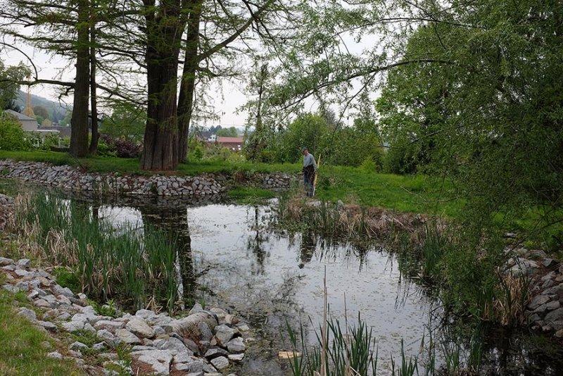 Pflegearbeiten am Schlosspark Amphibienteich 1