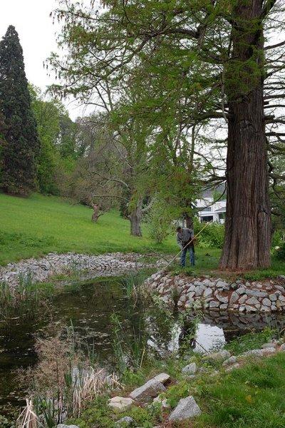 Pflegearbeiten am Schlosspark Amphibienteich 3