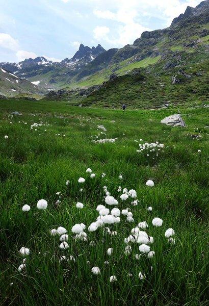 11-Aufstieg-zur-Klostertaler-Umwelthütte-10-10x15s