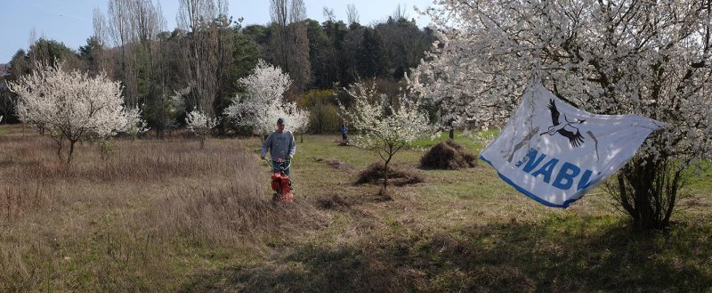 Trockenrasen-Malchen-Süd-11-10x24s
