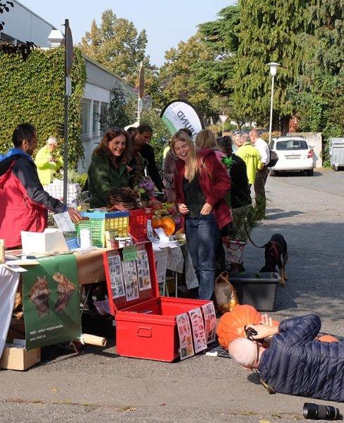 Pflanzenflohmarkt 30 10x12s