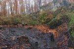 Wassersteinbruch-Abfischen-Ecki-01-10x16s